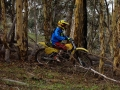 dsc08957_boddington_05-16_low-res.jpg