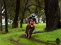 dsc09223_boddington_05-16_low-res.jpg