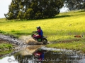 dsc04145_Toodyay_09-16_low-res.jpg